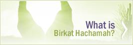 What is Birkat Hachamah?